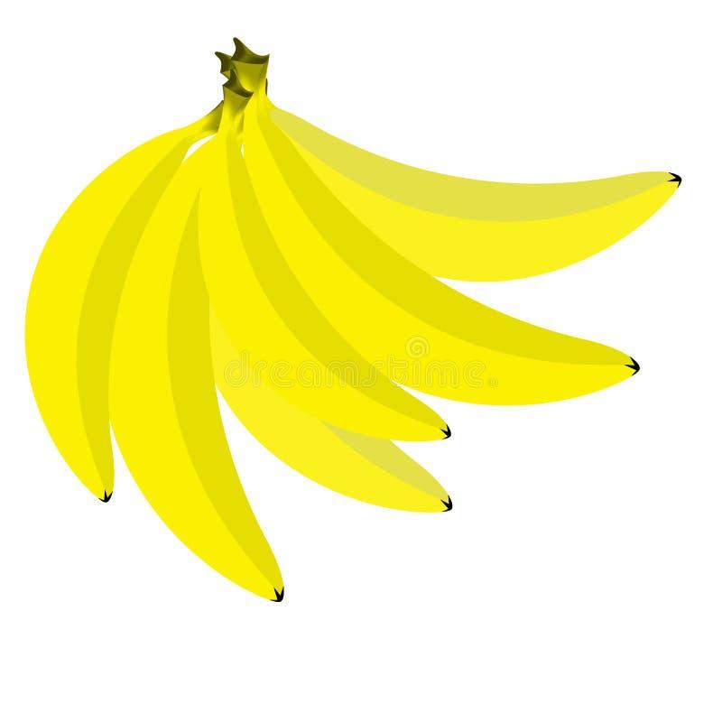 成熟香蕉和明亮 库存照片