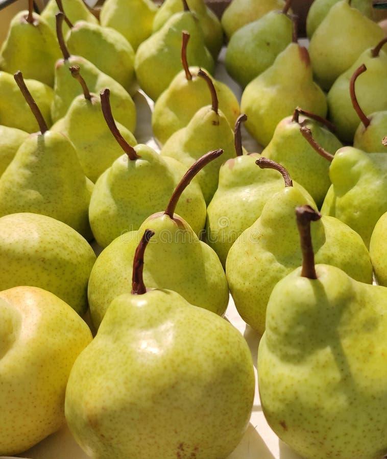 成熟黄色梨背景在其他后的行一,切口站立用不同的方向,侧视图,抽象,平 库存图片