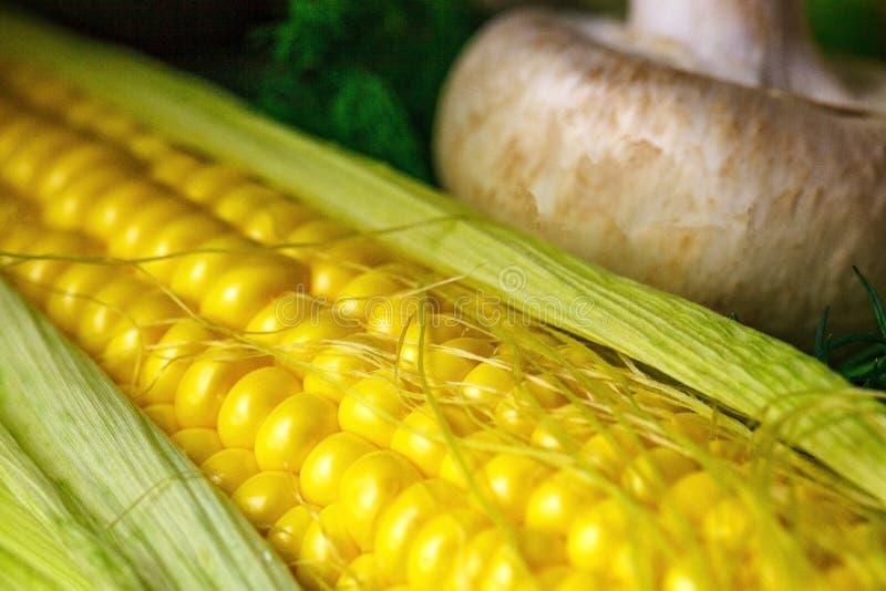 成熟黄色玉米和蘑菇特写镜头静物画 免版税库存图片