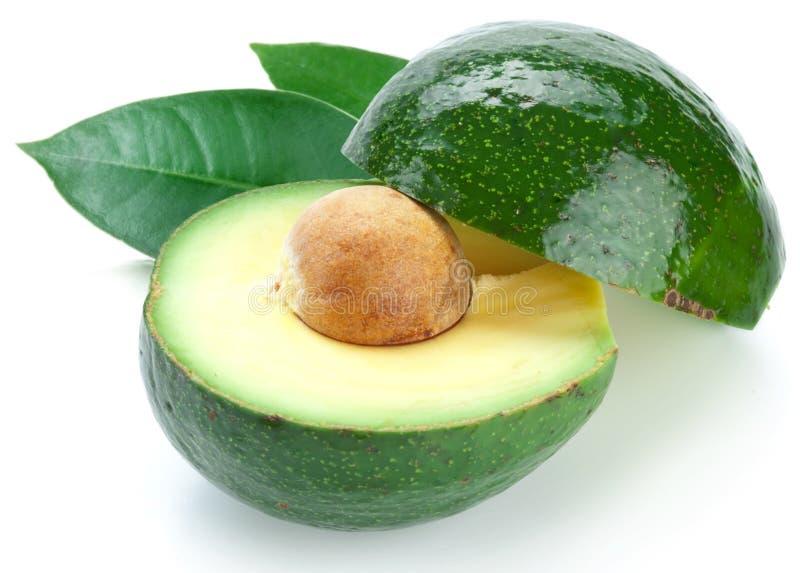 成熟avacados的叶子 免版税库存图片