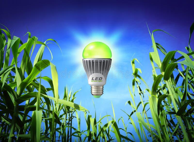 成长生态-被带领的灯-绿色照明设备 免版税图库摄影