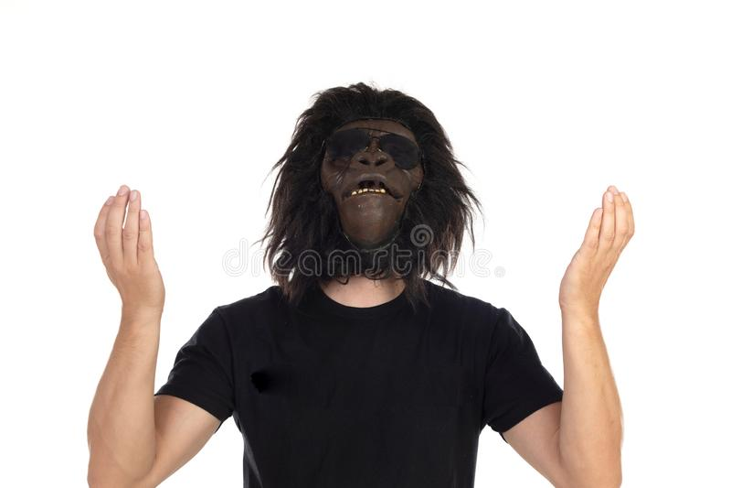 我们来自猴子 免版税库存图片