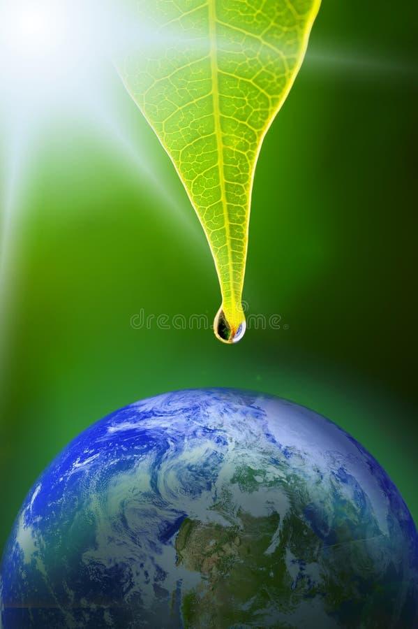 我们的地球的泪花 免版税库存照片