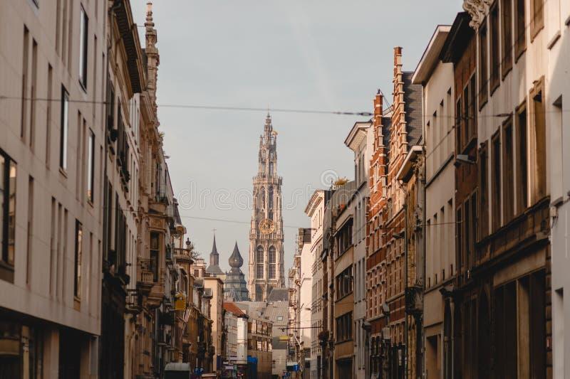 我们的夫人和街道大教堂有传统建筑的在安特卫普,比利时 免版税图库摄影