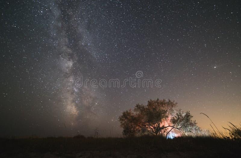我们的家庭星系,上升在领域的银河的中心,夜担任主角风景,在星下的树 免版税图库摄影