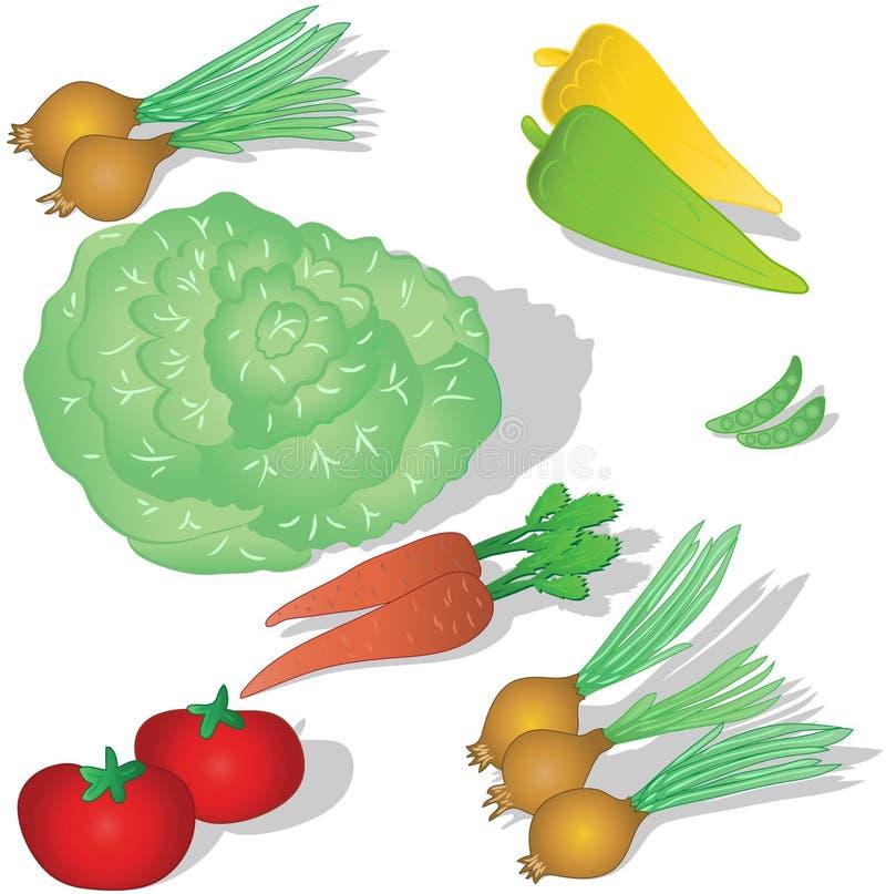 我们的表蔬菜 向量例证