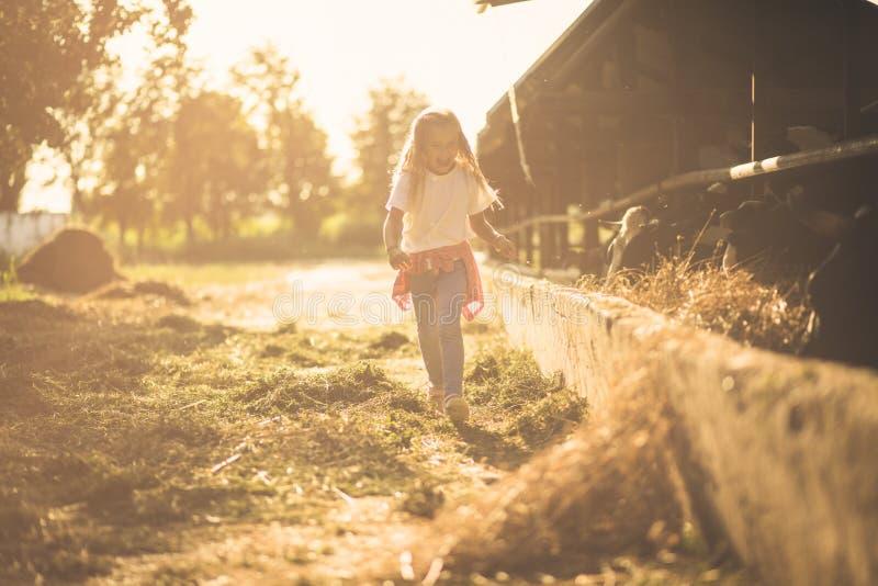 我喜欢在农场度过天 库存照片
