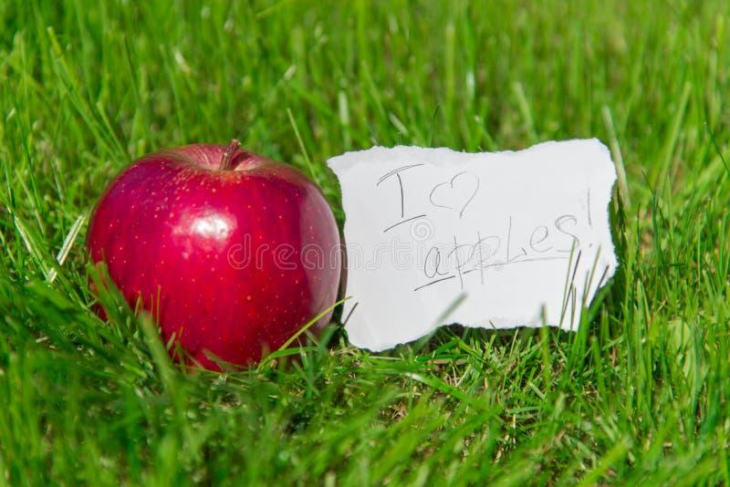 我喜欢苹果! 免版税库存图片