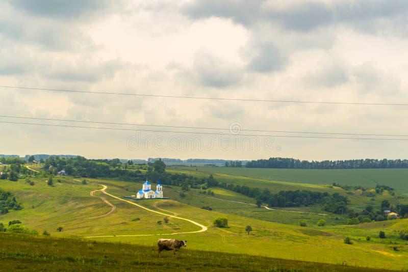 我喜爱的村庄 库存图片