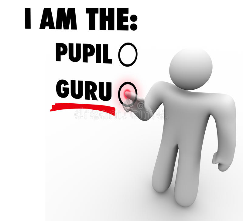我是人选择专家的老师指南的宗师 库存例证