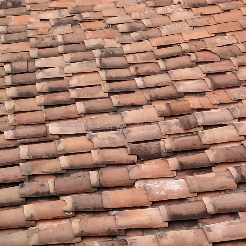 我是在屋顶户外 免版税库存图片