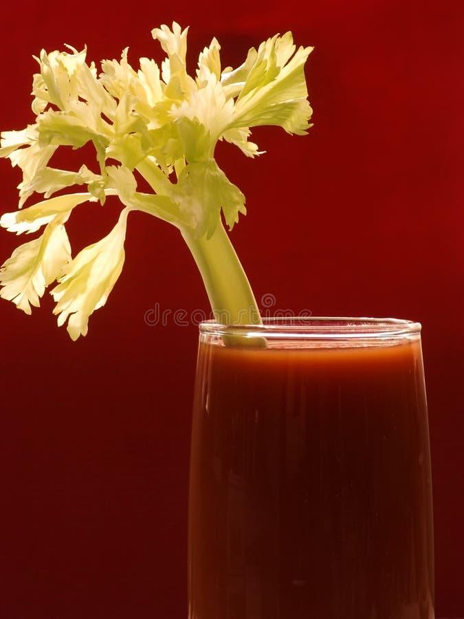 我汁液蕃茄 免版税库存照片
