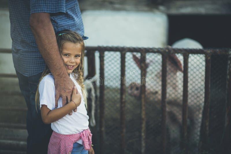 我爱在农场的这些共同的天 图库摄影
