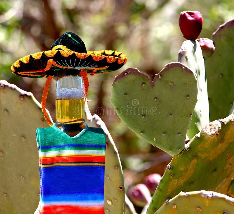 我爱墨西哥 啤酒瓶和仙人掌心脏 库存照片