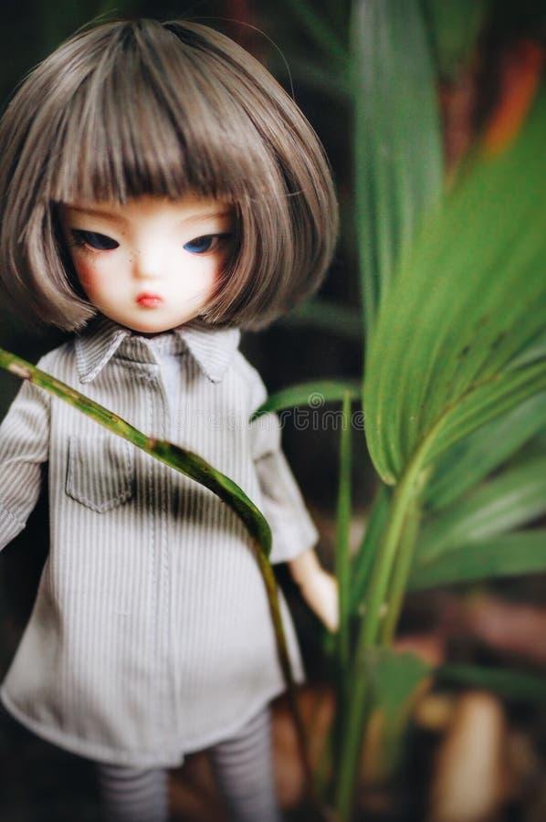 我的玩偶 图库摄影