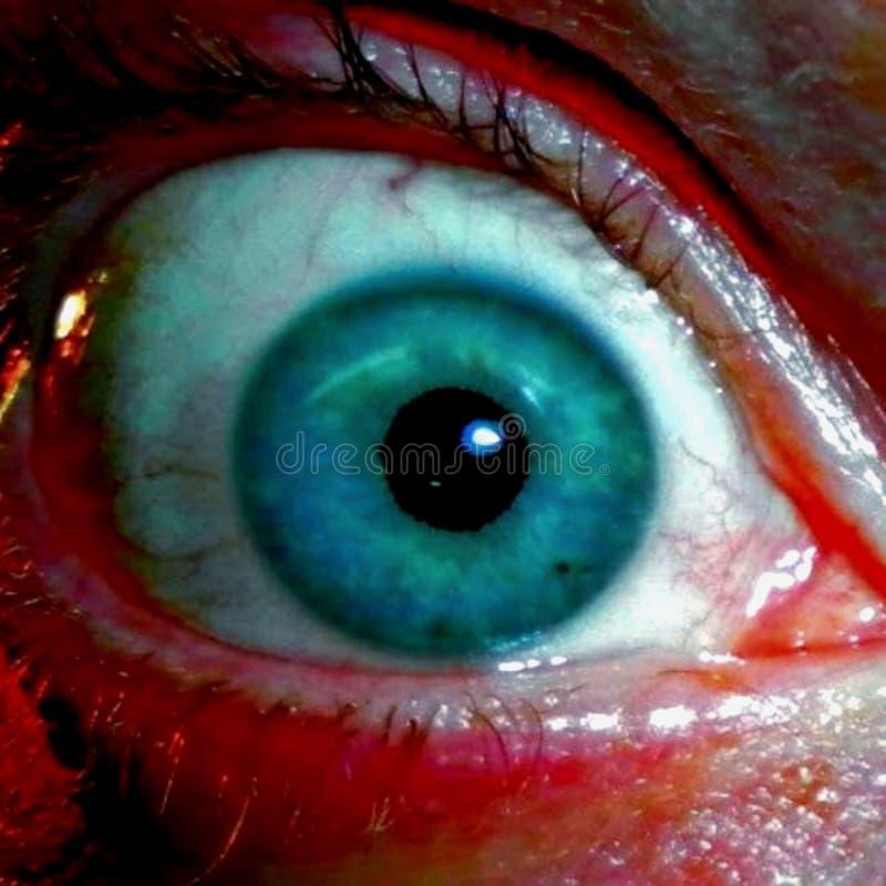我的眼睛& x28;Color& x29; 免版税库存照片
