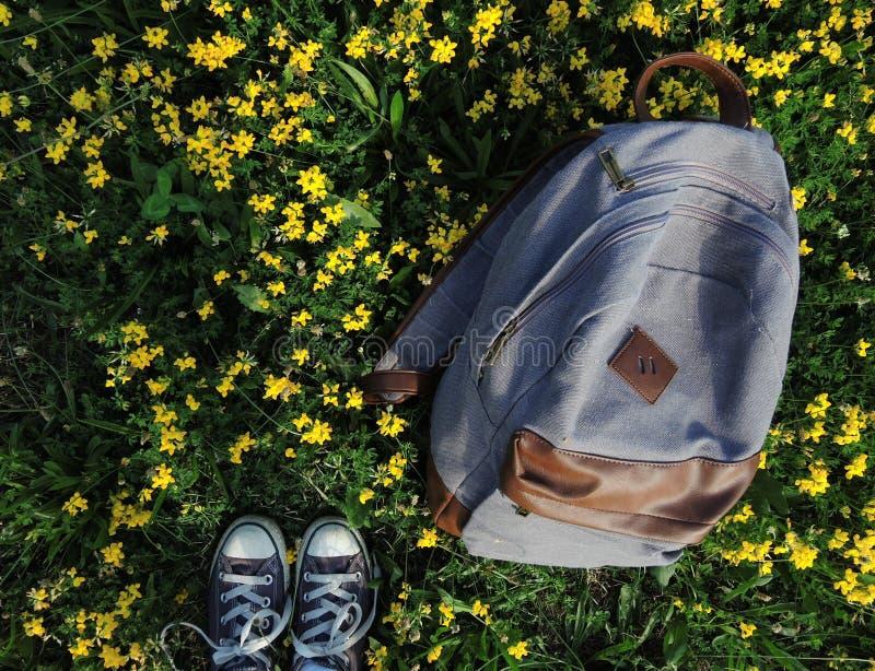 我的脚和帆布backback俯视图在某一象草的花田在夏天期间,当我感到哀伤时 免版税图库摄影