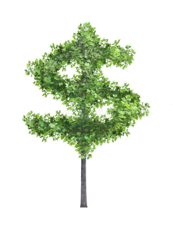 我货币结构树 皇族释放例证