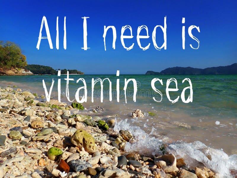 我需要的所有是维生素是在度假的旅客的海设计并且爱海洋 向量例证