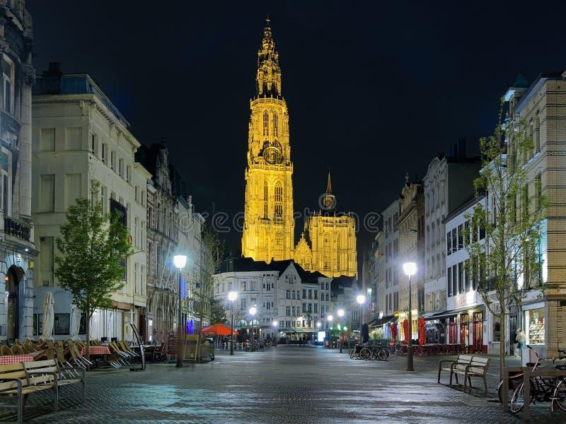 我们的夫人大教堂的夜视图在安特卫普,比利时 库存照片