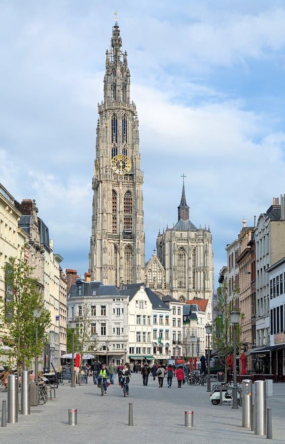 我们的夫人大教堂的看法在安特卫普,比利时 免版税图库摄影