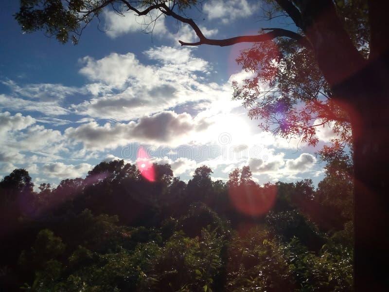 我jst爱美好的天空视图 免版税图库摄影