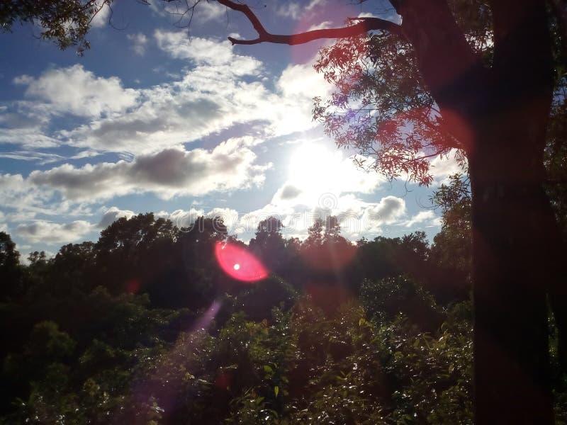 我jst爱美好的天空视图 库存照片