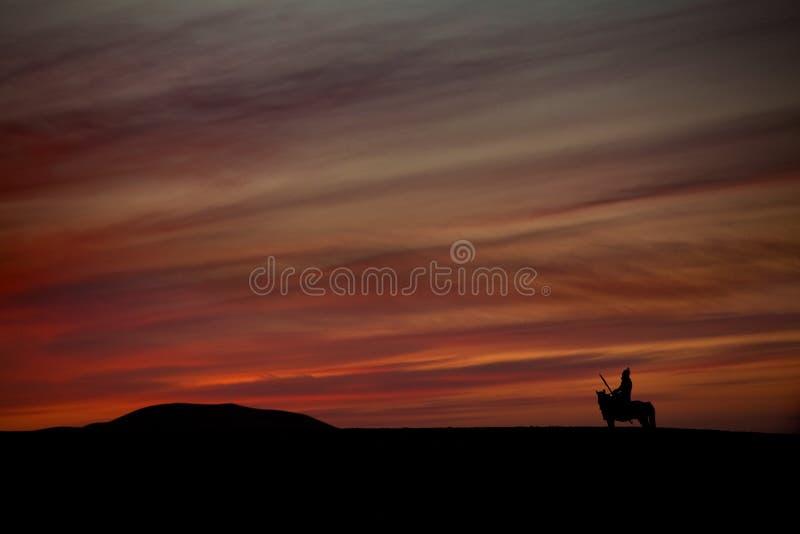 战士剪影马的,单独蒙古御马者 免版税图库摄影