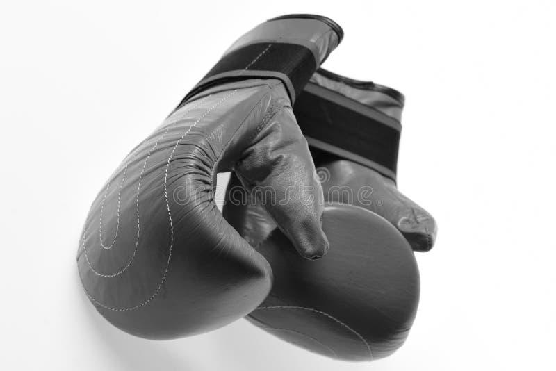 战斗和训练的皮革箱子设备 在白色背景在红颜色的拳击手套隔绝的 免版税库存图片