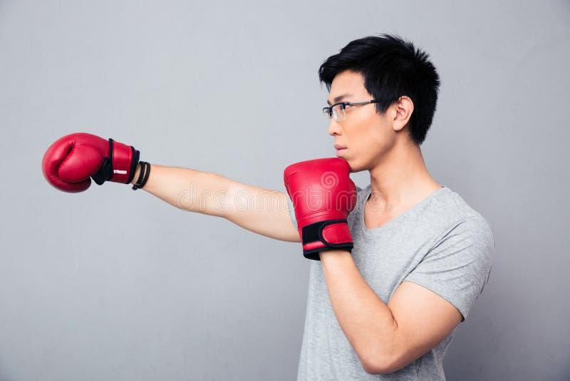 战斗在拳击手套的亚裔人 免版税库存照片
