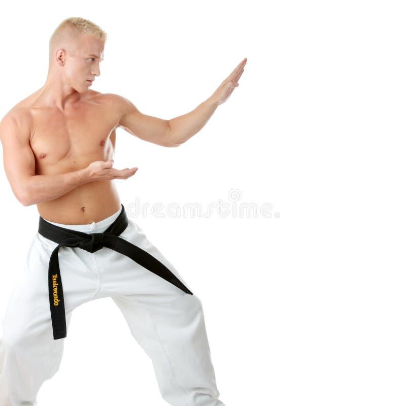 战斗机跆拳道 图库摄影