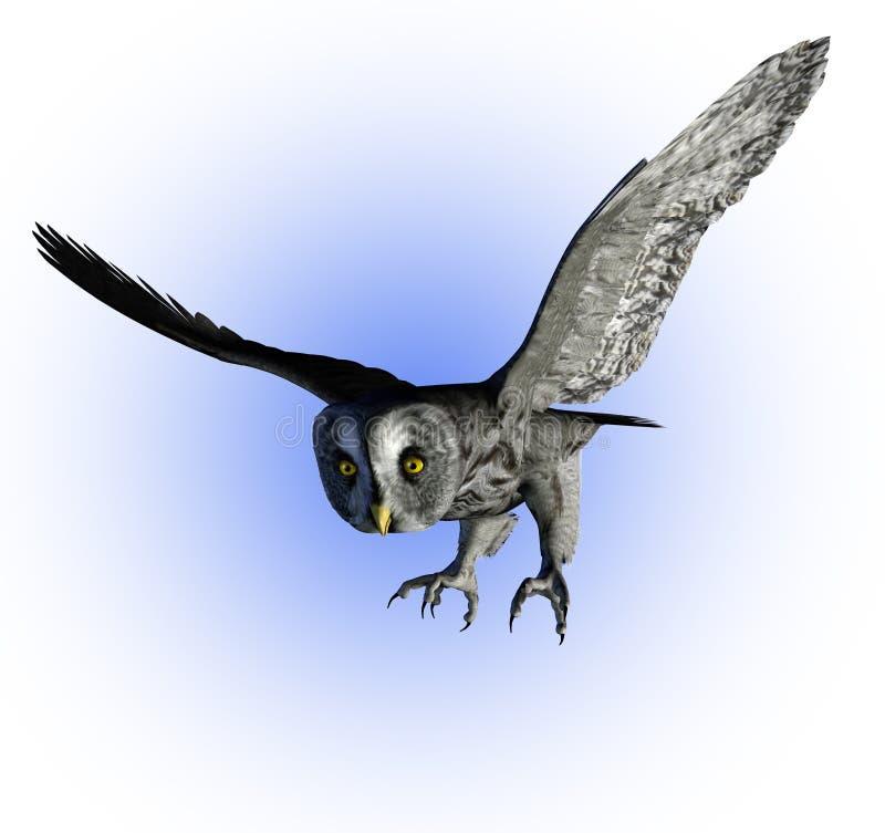 截去的灰色极大的猫头鹰路径 库存例证
