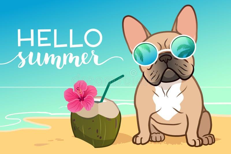 戴在一个沙滩,海洋的法国牛头犬小狗反射性太阳镜在背景,椰子饮料中,你好夏天文本 ?? 向量例证