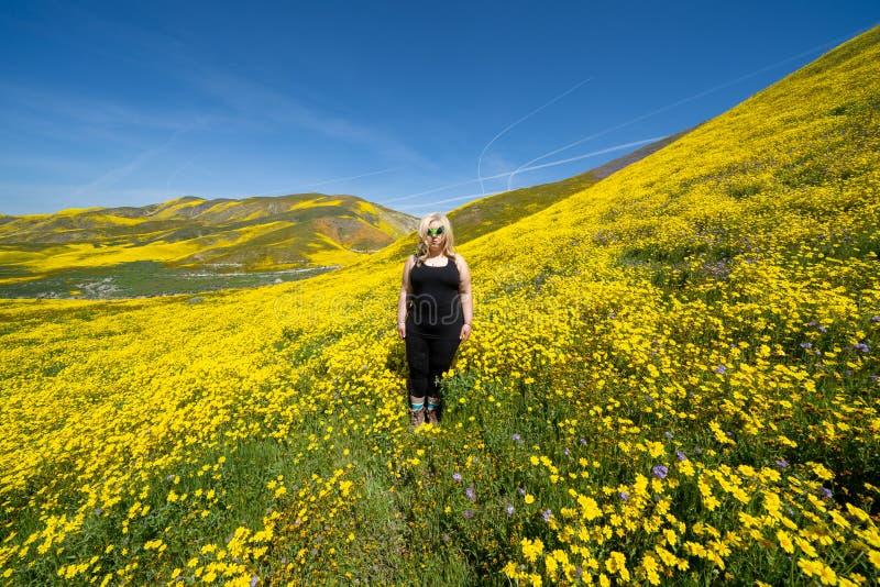 戴在goldfield野花的领域的鬼,蠕动的白肤金发的妇女绿色外籍人太阳镜在卡里索抱怨国家历史文物 免版税库存照片