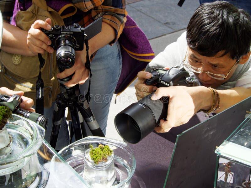 戴眼镜的一个人和其他摄影师带领他们的照相机进入在青苔片断的焦点  库存照片