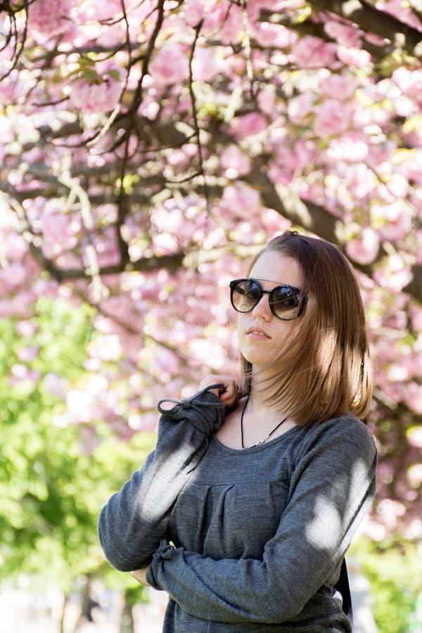 戴眼镜的青少年的女孩以开花的佐仓为背景 免版税图库摄影