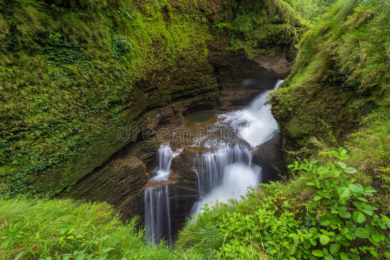 戴维斯秋天是瀑布博克拉位于卡斯基 库存照片
