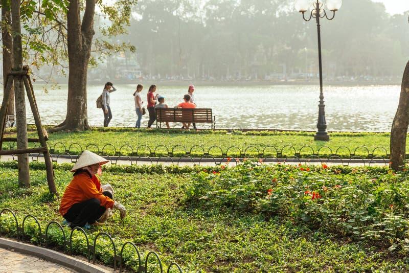 戴越南圆锥形帽子的红色布料妇女花匠在还剑湖附近剪了草在围场室外公园在河内,越南 库存照片