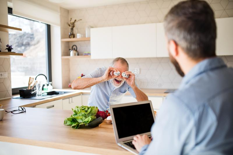 户内成人行家儿子和资深父亲在家厨房里,获得乐趣 免版税库存照片