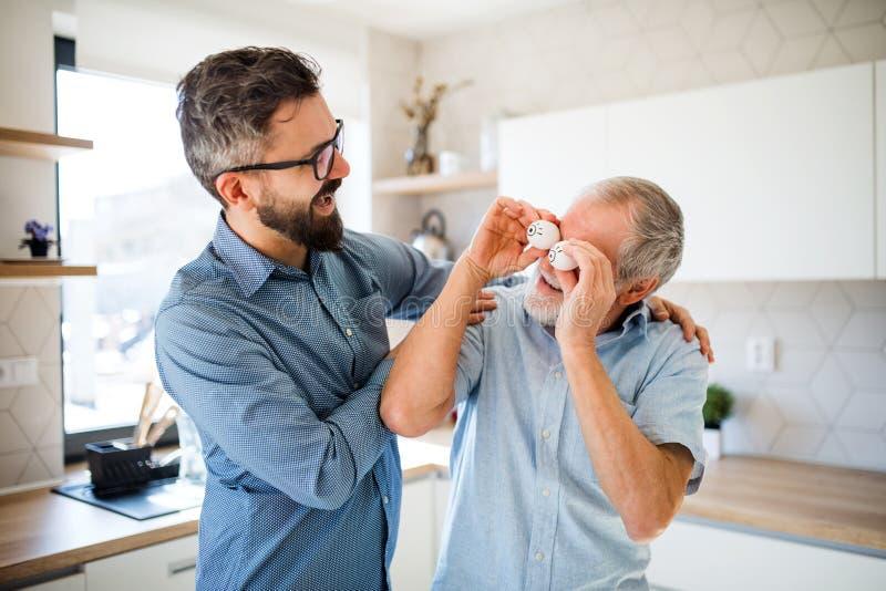 户内成人行家儿子和资深父亲在家厨房里,获得乐趣 图库摄影