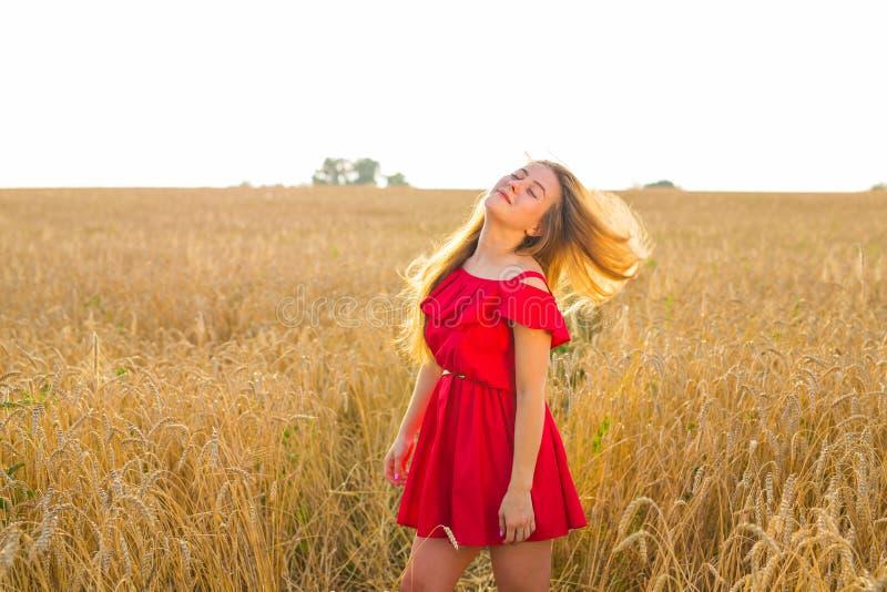 户外华美的浪漫女孩 在短的红色礼服的美好的模型在领域 吹的头发长的风 由后照 免版税库存照片