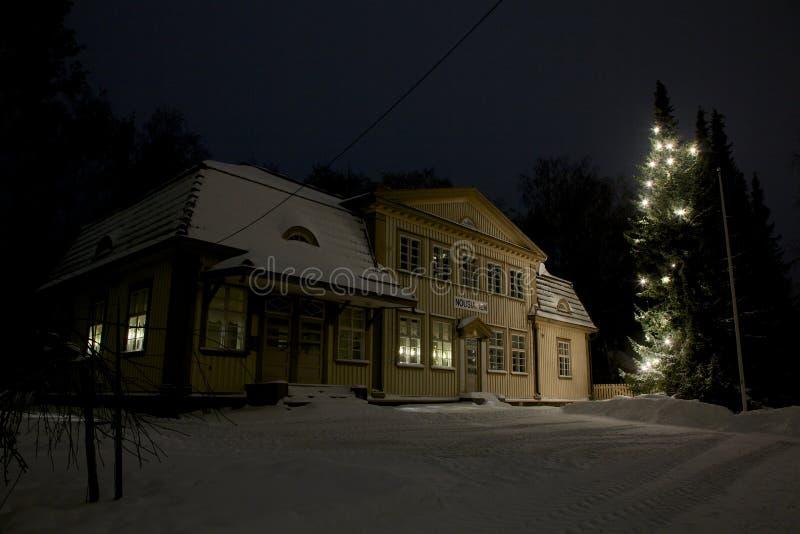 户外圣诞树 免版税库存图片