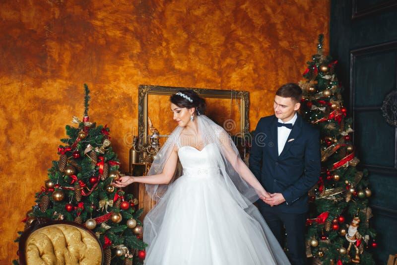户外婚姻冬天的新娘新郎 恋人新娘和新郎在圣诞节装饰 拿着礼物的新郎 圣诞节的浪漫惊奇 免版税库存照片