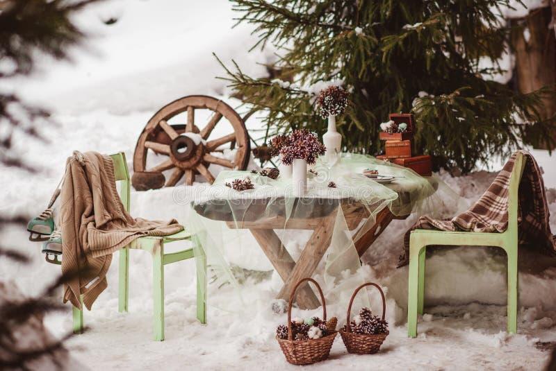 户外婚姻冬天的新娘新郎 免版税库存照片