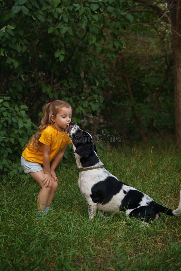 户外小女孩和杂种狗 免版税图库摄影
