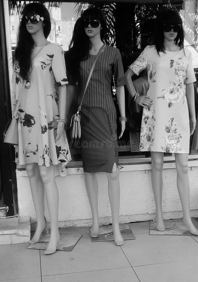 户外时尚时装模特 库存图片
