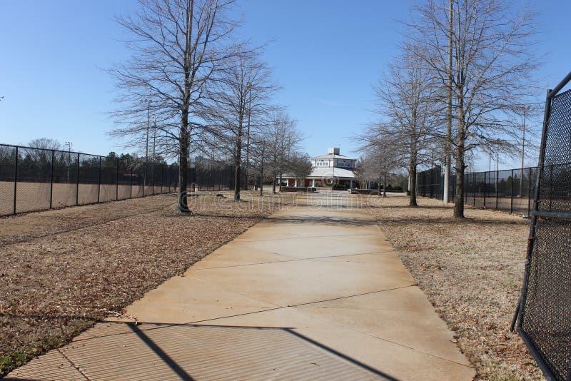 户外森林野餐和蓝天在公园 库存图片