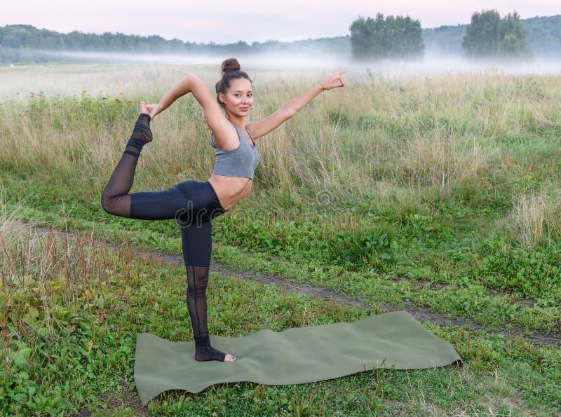 户外瑜伽在领域 库存照片