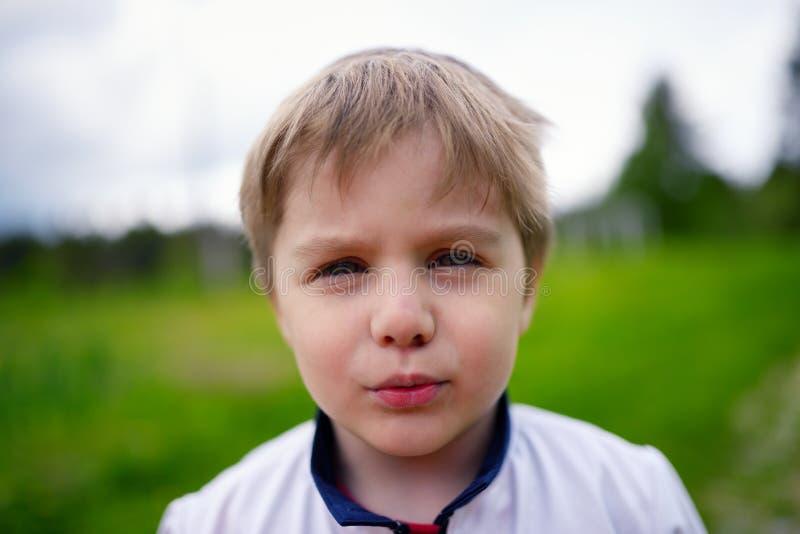 户外白种人小男孩特写镜头画象  库存图片