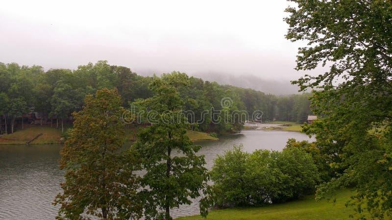户外绿色树草湖薄雾山风景  库存照片